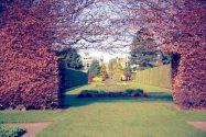 worldcitypages-Royal-Botanic-Gardens-two