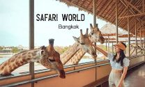 Safari-World-Bangkok